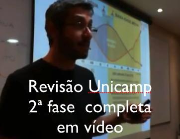 REVISÃO UNICAMP 2 FASE